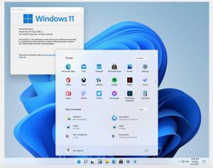Windows 11 leaked build