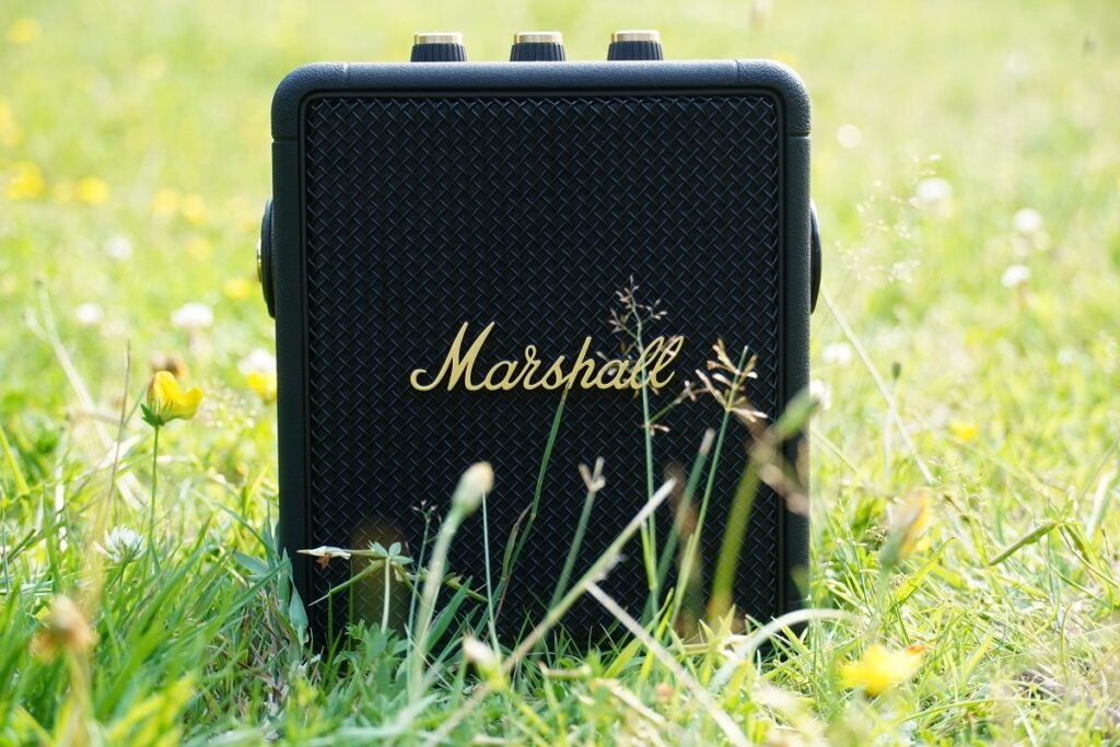 Marshall Stockwell II in grass
